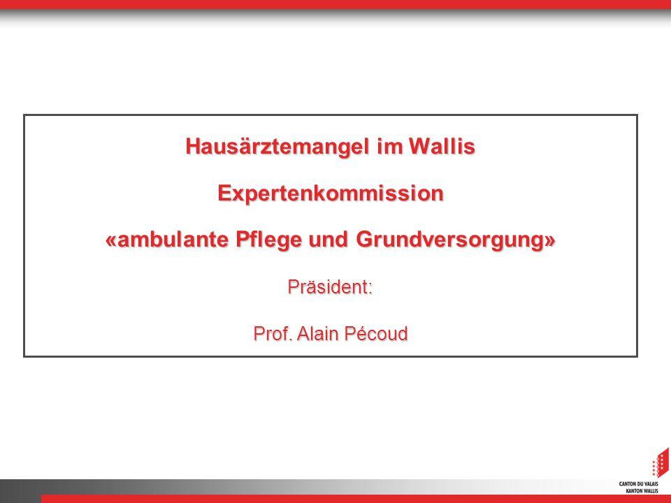 Hausärztemangel im Wallis Expertenkommission «ambulante Pflege und Grundversorgung» Präsident: Prof. Alain Pécoud