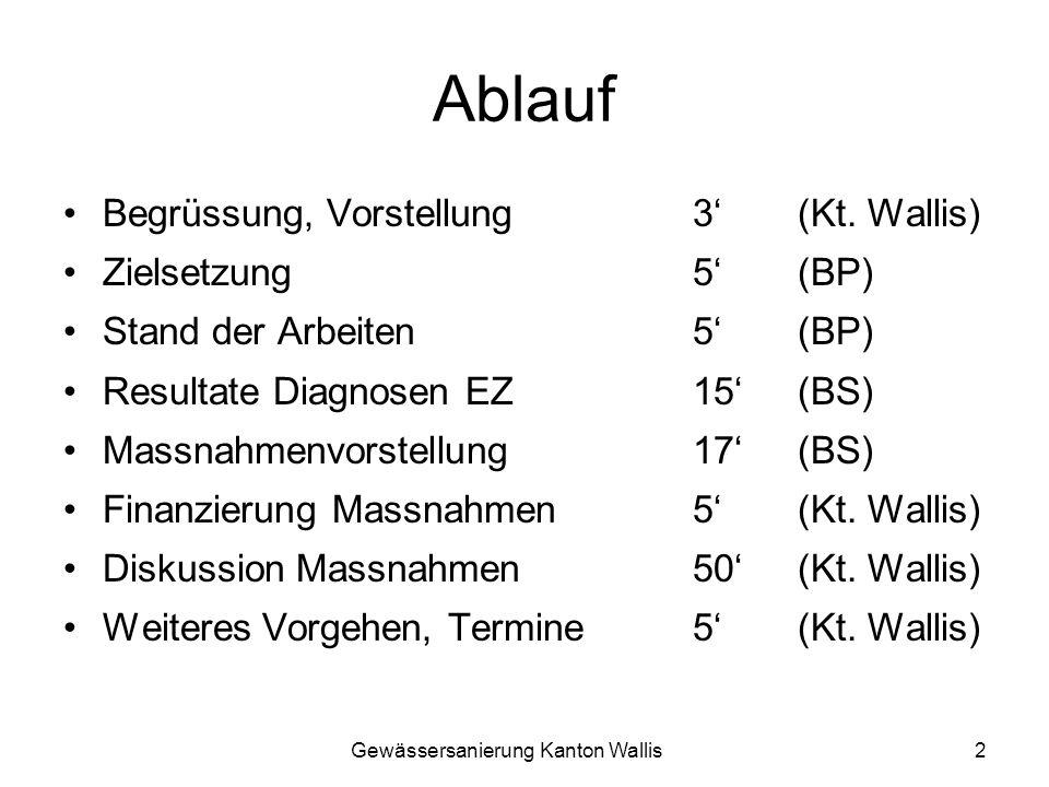 Gewässersanierung Kanton Wallis2 Ablauf Begrüssung, Vorstellung3 (Kt. Wallis) Zielsetzung5 (BP) Stand der Arbeiten5 (BP) Resultate Diagnosen EZ 15 (BS