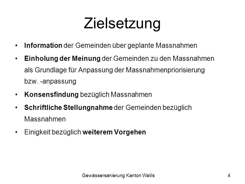 Gewässersanierung Kanton Wallis4 Zielsetzung Information der Gemeinden über geplante Massnahmen Einholung der Meinung der Gemeinden zu den Massnahmen