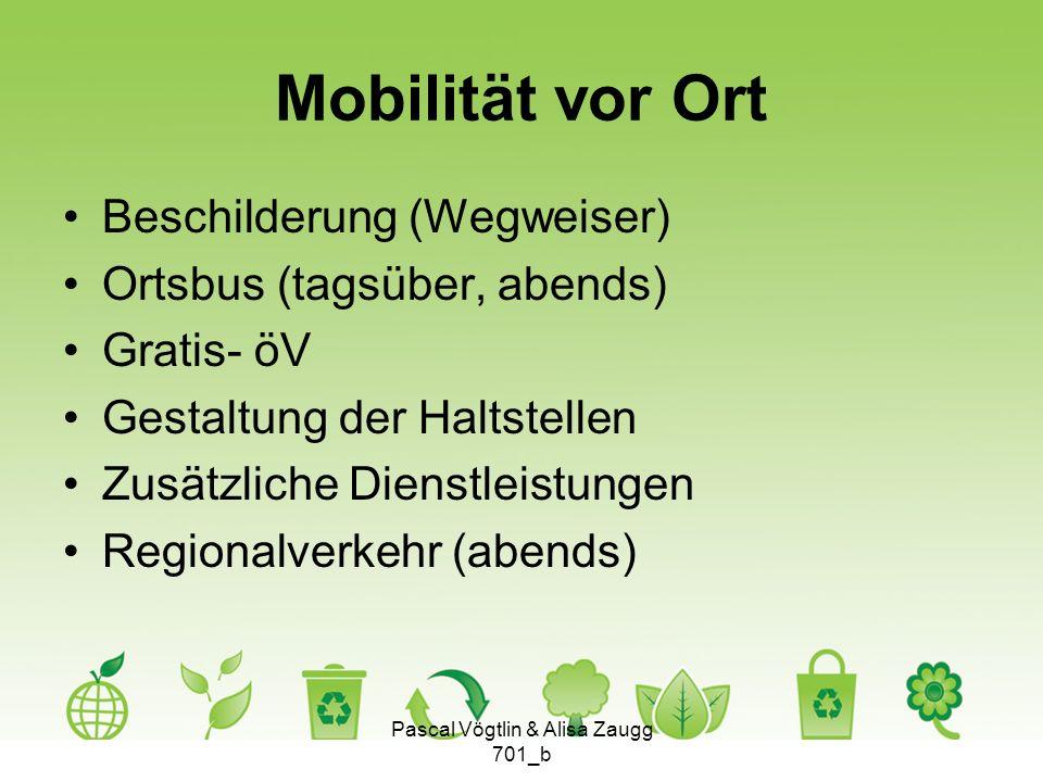 Mobilität vor Ort Beschilderung (Wegweiser) Ortsbus (tagsüber, abends) Gratis- öV Gestaltung der Haltstellen Zusätzliche Dienstleistungen Regionalverk