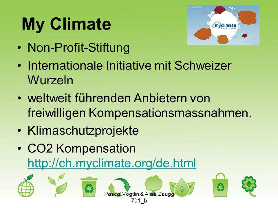 My Climate Non-Profit-Stiftung Internationale Initiative mit Schweizer Wurzeln weltweit führenden Anbietern von freiwilligen Kompensationsmassnahmen.