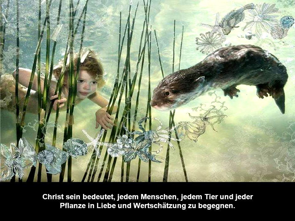 Zweifle nicht daran, dass du ein Kind Gottes bist, ein Teil Seines Lichts, Seiner Liebe, Seiner Wahrheit und Seiner S c h ö n h e i t !