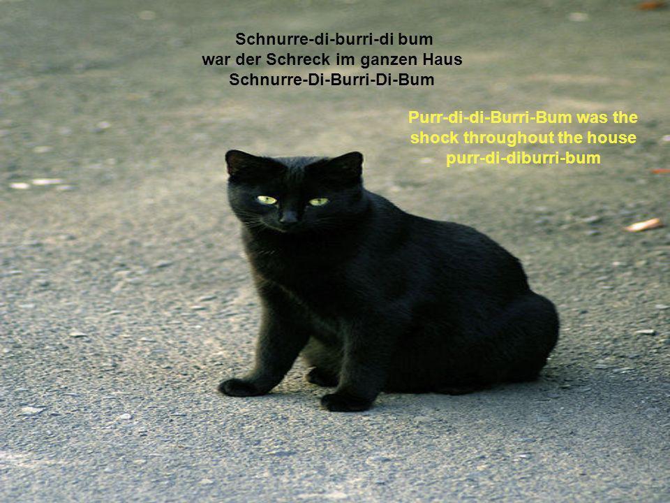 Schnurre-di-burri-di bum war der Schreck im ganzen Haus Schnurre-Di-Burri-Di-Bum Purr-di-di-Burri-Bum was the shock throughout the house purr-di-diburri-bum
