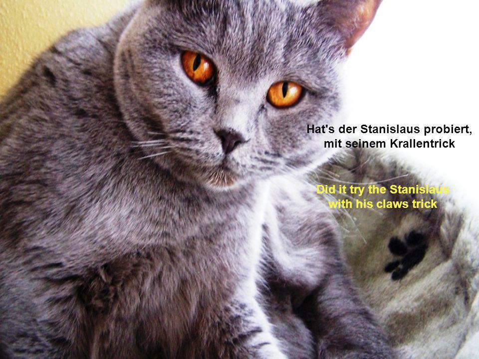 Hat s der Stanislaus probiert, mit seinem Krallentrick Did it try the Stanislaus with his claws trick
