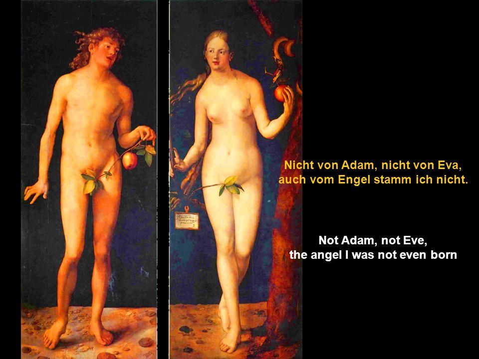 Nicht vom Diesseits, nicht vom Jenseits, nicht von Eden, nicht von der Hölle Not from this world, not from the other side, not from Eden, not from hell