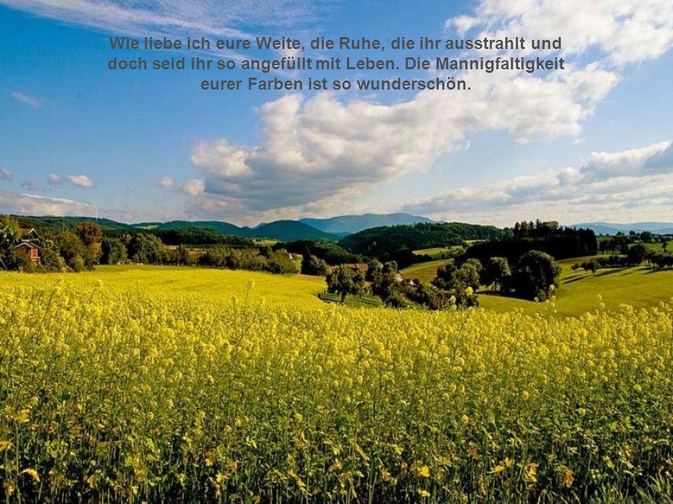 Nach einem Gedicht von Marianne Reepen. hme12@t-online.de bitte klicken!