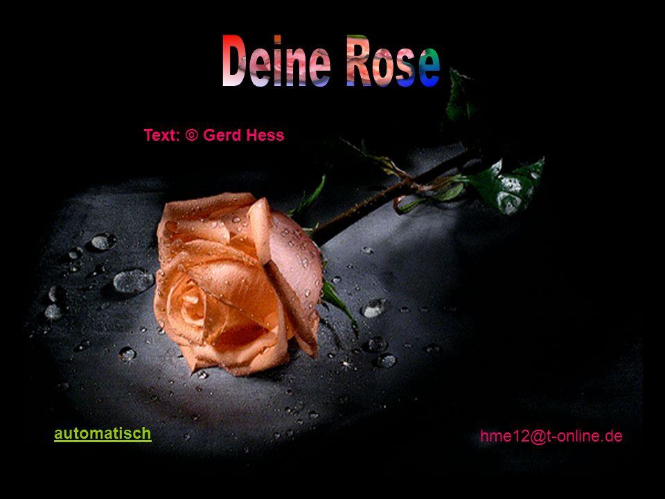 Text: © Gerd Hess hme12@t-online.de automatisch
