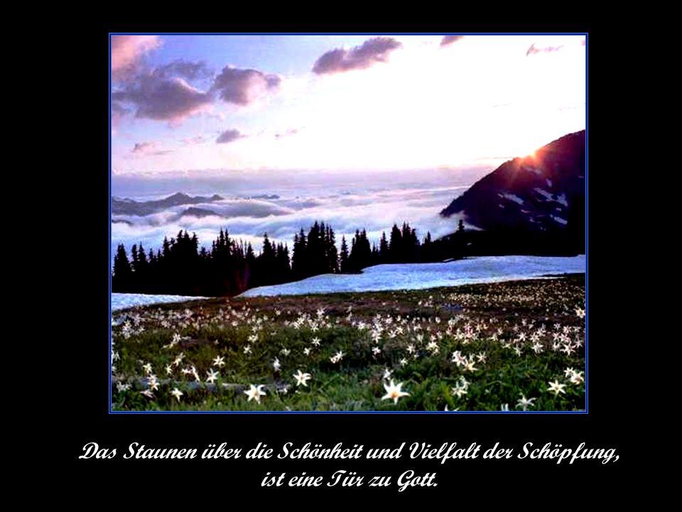 Text von Ernst Ferstl © Text von Ernst Ferstl hme12@t-online.de bitte klicken
