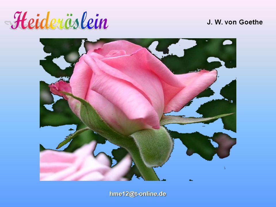 J.W. von Goethe hhhh mmmm eeee 1111 2222 @@@@ tttt ---- oooo nnnn llll iiii nnnn eeee....