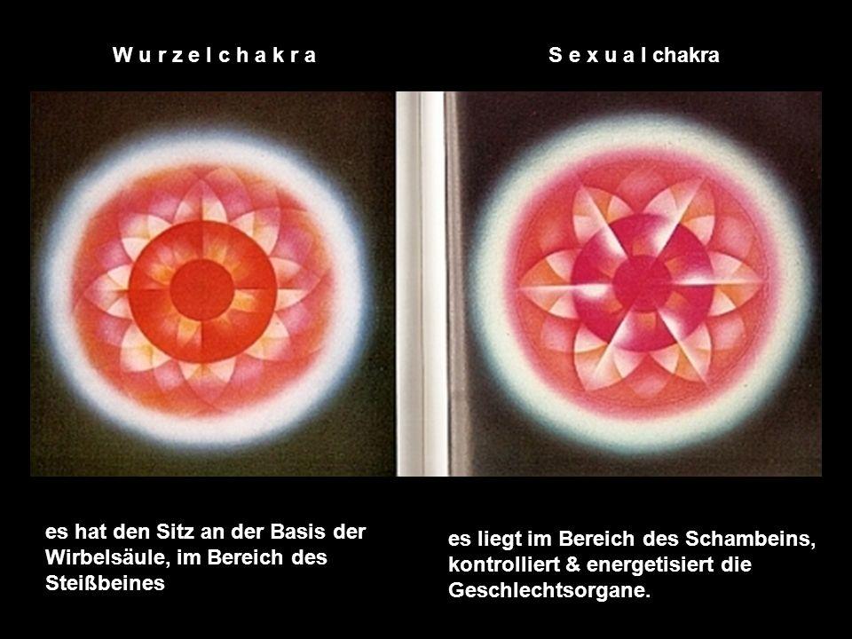 Kronen-, Stirn-, Ajna-, Hals-, Herz-, Solarplexus-, Milz-, Nabel-, Sexualchakra Herz-, Solarplexus-, Milz-, Meng-Mein-, Wurzelchakra