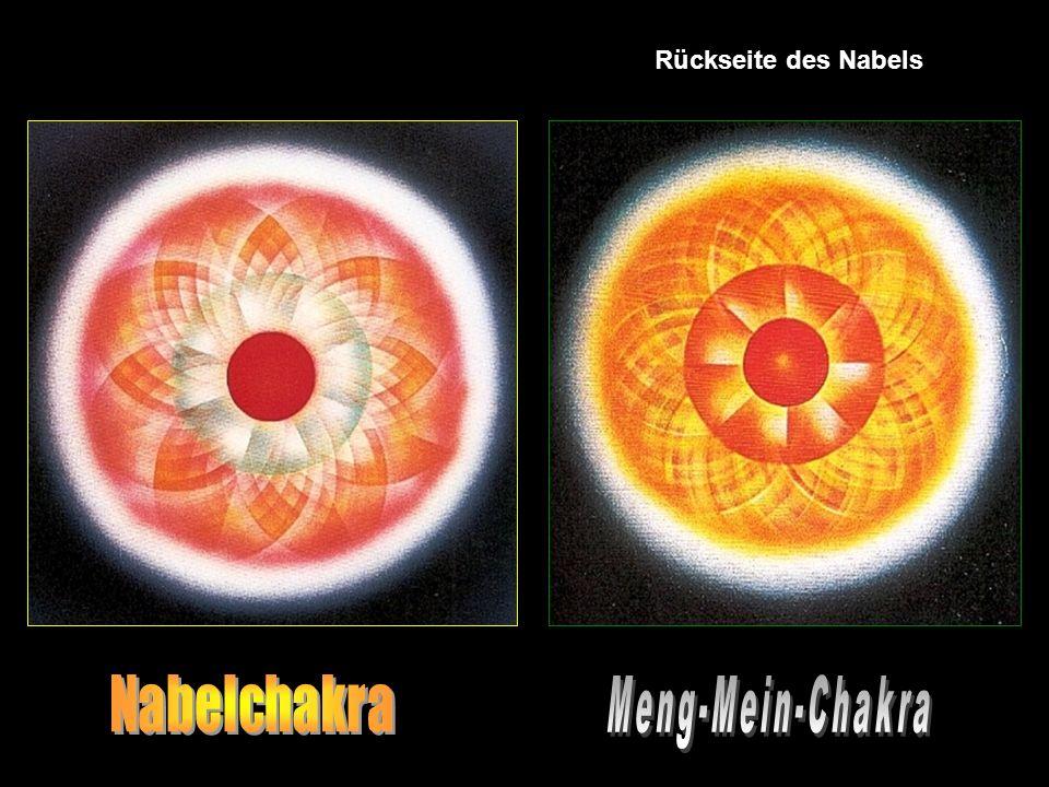 Die 2 Welten der Chakras es gibt keine guten oder schlechten Chakras, aber eine Unterteilung in untere & obere Zentren. Die 3 dimensionale Welt der un