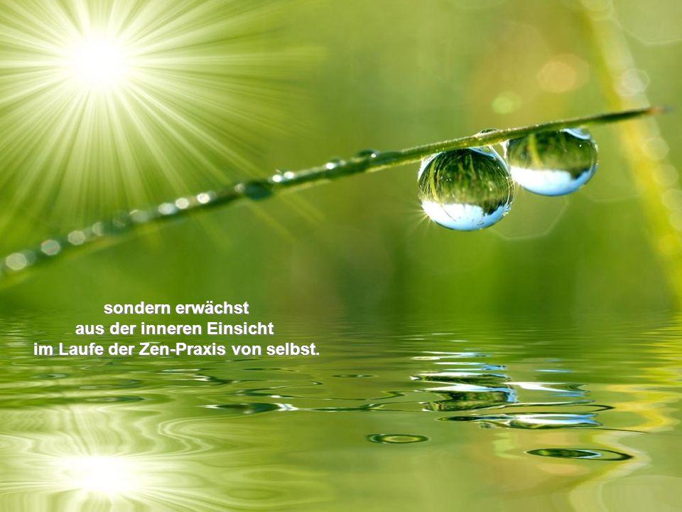 sondern erwächst aus der inneren Einsicht im Laufe der Zen-Praxis von selbst.