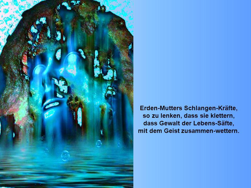 Erden-Mutters Schlangen-Kräfte, so zu lenken, dass sie klettern, dass Gewalt der Lebens-Säfte, mit dem Geist zusammen-wettern.