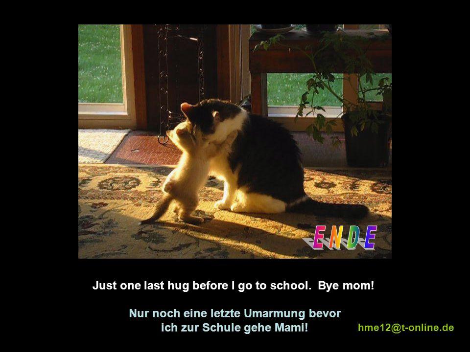Mommy, I m tired. Cuddle meeee!!! Nimm mich auf den Arm Mami, ich bin müde!