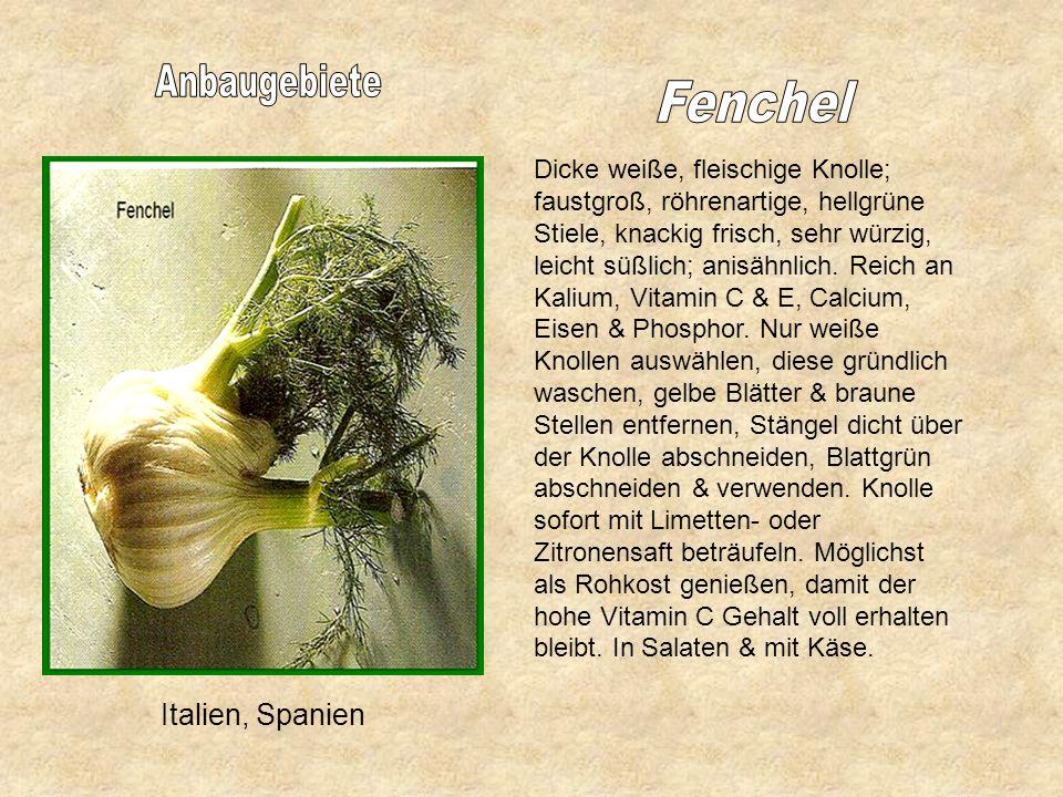 Deutschland, Österreich, Italien, Holland, Spanien Chinakohl Reife: länglicher fest geschlossener Kohlkopf, knackig frisch geschmacklos. Enthält Vitam