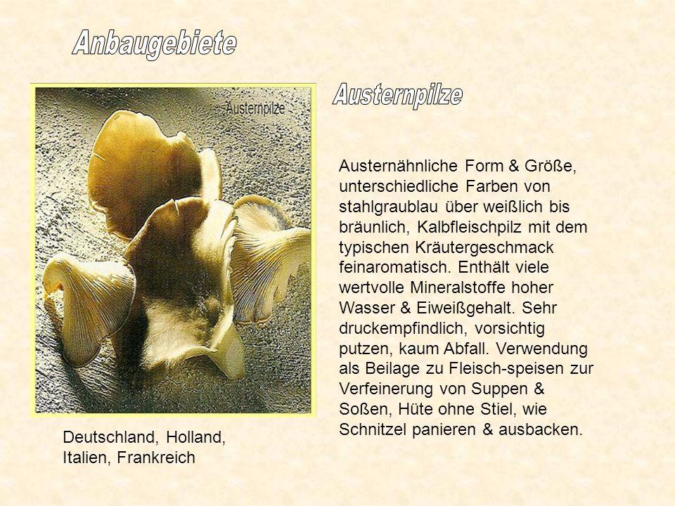 Deutschland, Holland, Italien, Frankreich Austernähnliche Form & Größe, unterschiedliche Farben von stahlgraublau über weißlich bis bräunlich, Kalbfleischpilz mit dem typischen Kräutergeschmack feinaromatisch.