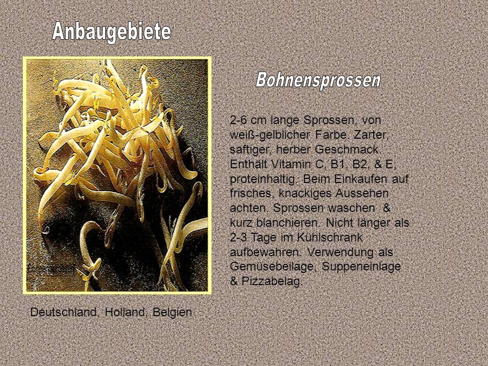 Deutschland, Holland, Belgien 2-6 cm lange Sprossen, von weiß-gelblicher Farbe.
