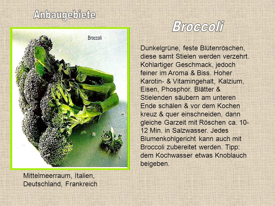 Deutschland, Holland, Belgien 2-6 cm lange Sprossen, von weiß-gelblicher Farbe. Zarter, saftiger, herber Geschmack. Enthält Vitamin C, B1, B2, & E, pr
