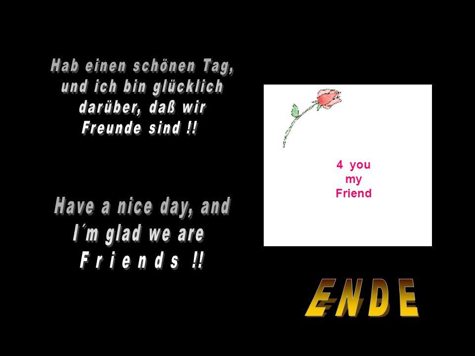 Don´t be confused by friends and acquaintances, there is a difference! Verwechsele die Begriffe Freunde und Bekanntschaften nicht, das ist ein Untersc