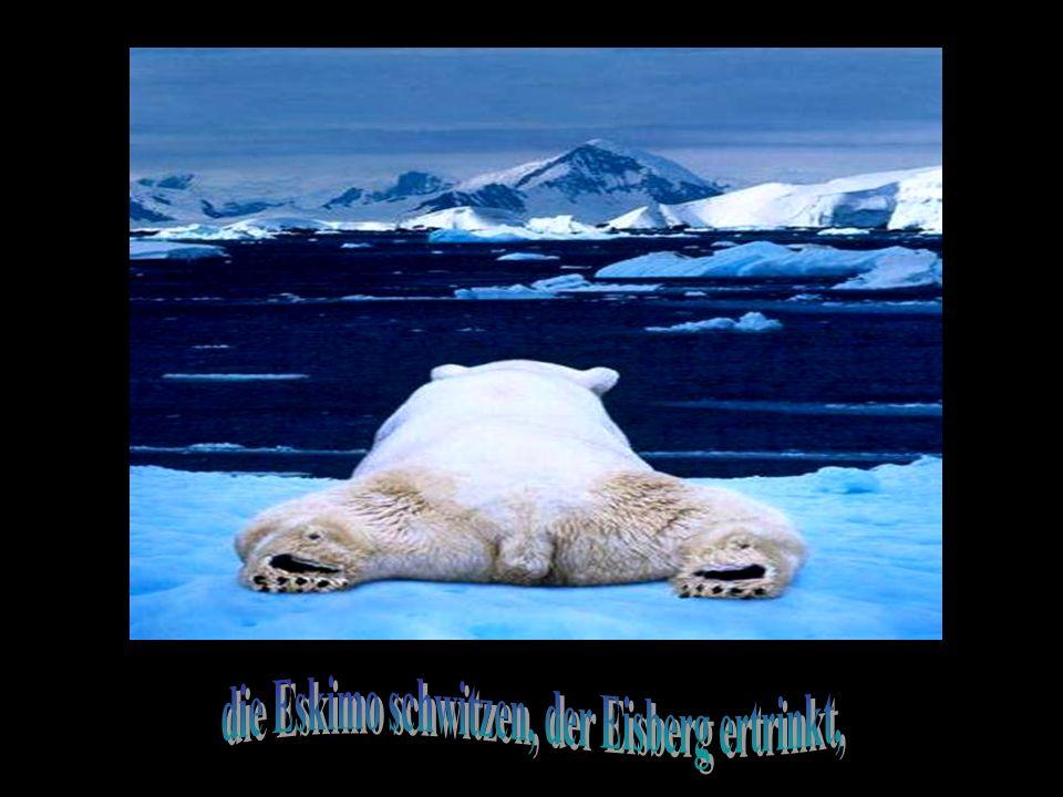 Die Erde gedeiht seit so vielen Jahr`n, jetzt wird`s aber Zeit, sie in den Graben zu fahr`n.