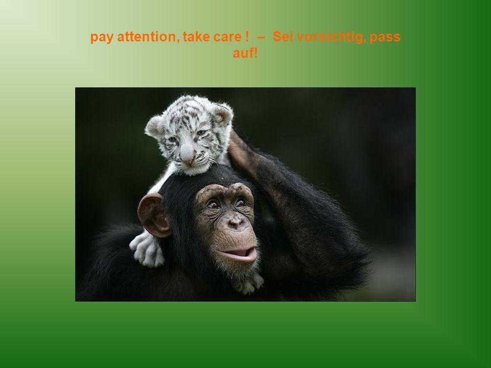 pay attention, take care ! – Sei vorsichtig, pass auf!