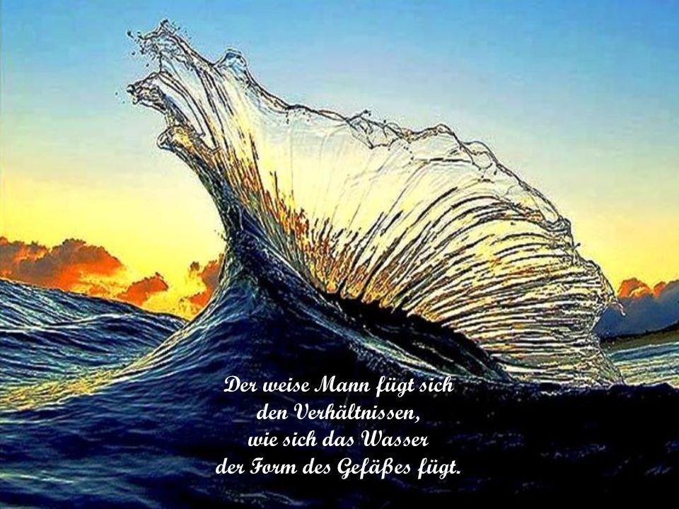 Der weise Mann fügt sich den Verhältnissen, wie sich das Wasser der Form des Gefäßes fügt.