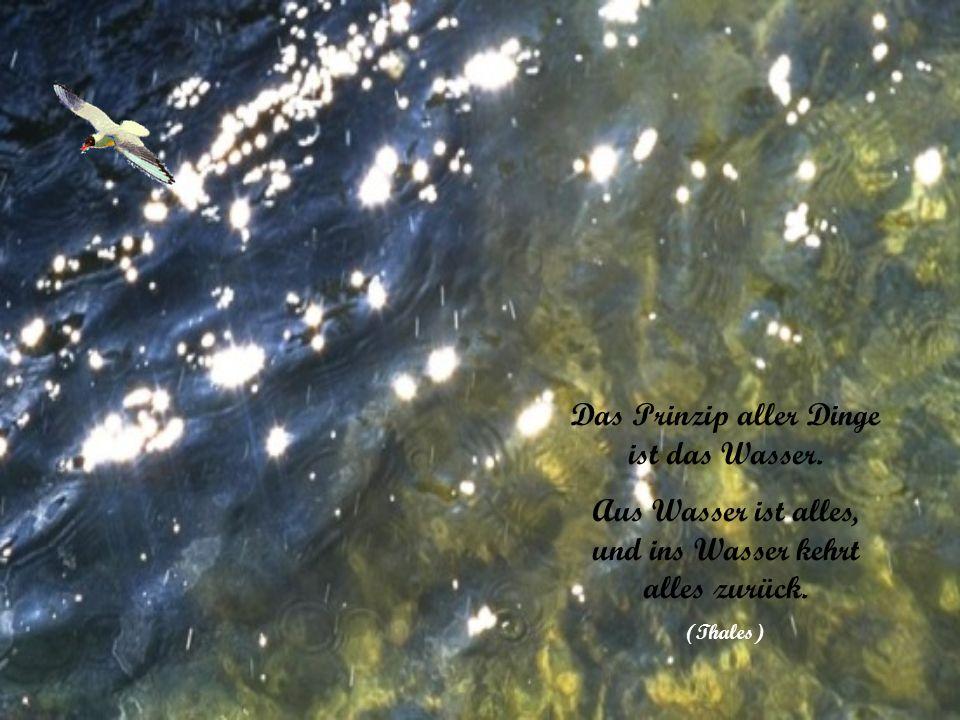 Das Prinzip aller Dinge ist das Wasser.Aus Wasser ist alles, und ins Wasser kehrt alles zurück.