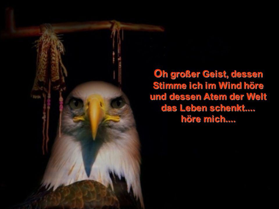 O h großer Geist, dessen Stimme ich im Wind höre und dessen Atem der Welt das Leben schenkt....