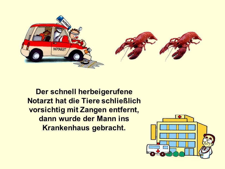 211142584/7 popcorn-fun.de Der schnell herbeigerufene Notarzt hat die Tiere schließlich vorsichtig mit Zangen entfernt, dann wurde der Mann ins Kranke
