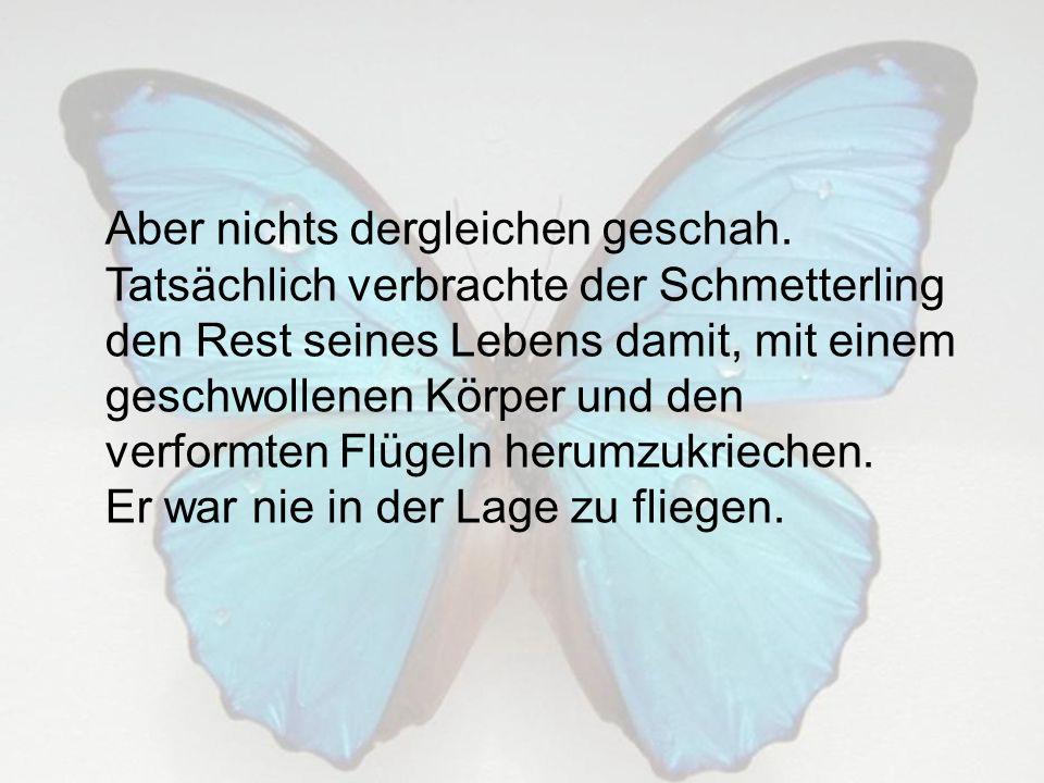 Was der Mann in seinem Bestreben, dem Schmetterling zu helfen nicht verstand, war, dass der Kampf aus der kleinen Öffnung des Kokons zu schlüpfen für den Schmetterling lebensnotwendig war.