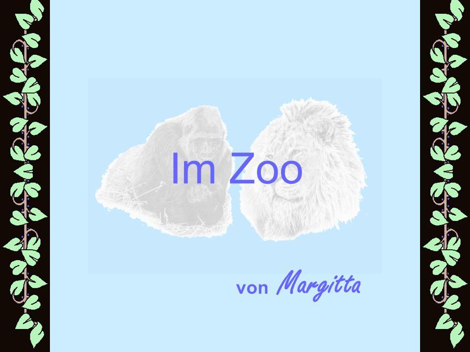 Ein alter Pantomime ging eines Tages in einen kleinen Zoo.