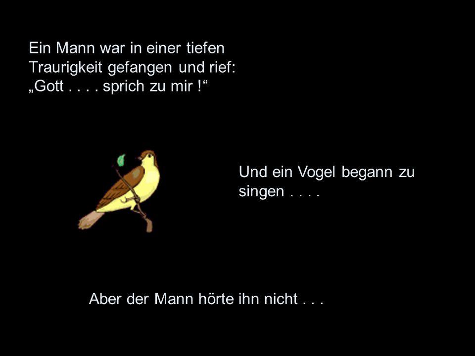 Ein Mann war in einer tiefen Traurigkeit gefangen und rief: Gott.... sprich zu mir ! Und ein Vogel begann zu singen.... Aber der Mann hörte ihn nicht.