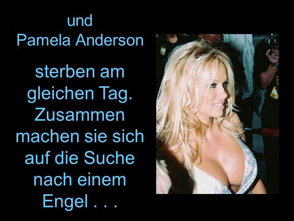 und Pamela Anderson sterben am gleichen Tag. Zusammen machen sie sich auf die Suche nach einem Engel...