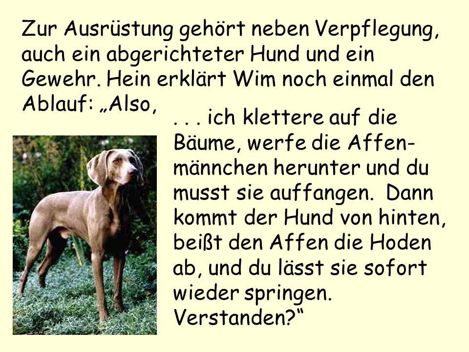 Zur Ausrüstung gehört neben Verpflegung, auch ein abgerichteter Hund und ein Gewehr. Hein erklärt Wim noch einmal den Ablauf: Also,... ich klettere au