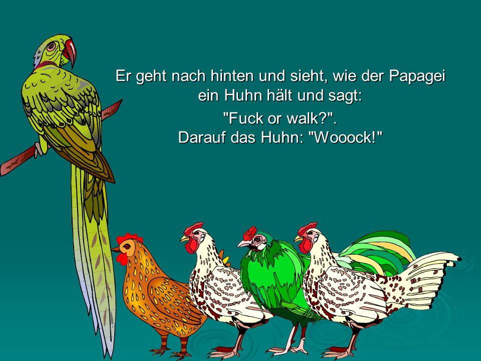 Er geht nach hinten und sieht, wie der Papagei ein Huhn hält und sagt: Fuck or walk? .