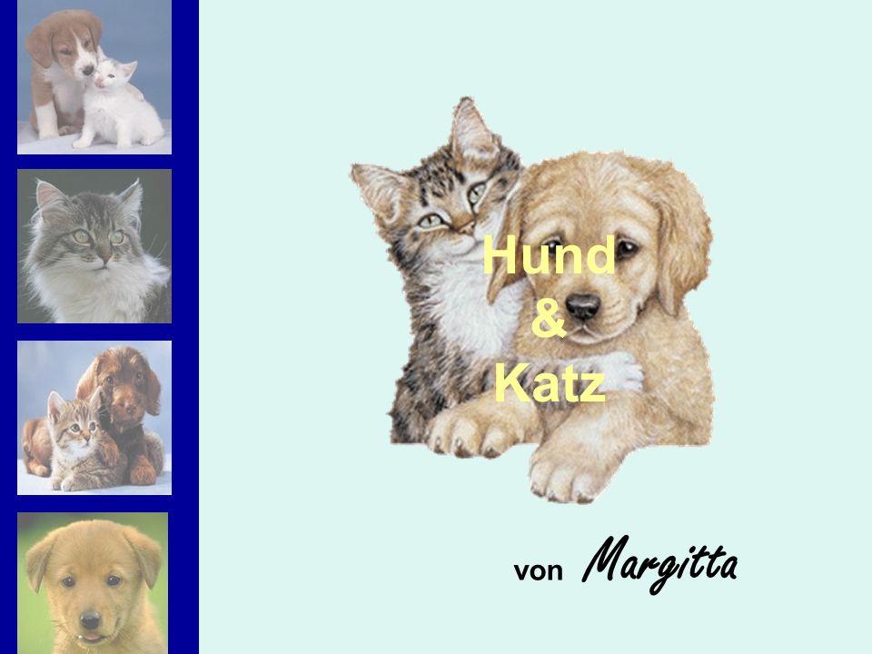 von Margitta Hund & Katz
