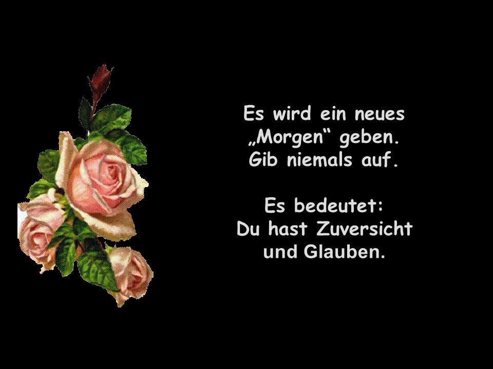 211142584/12 popcorn-fun.de Es wird ein neues Morgen geben. Gib niemals auf. Es bedeutet: Du hast Zuversicht und Glauben.