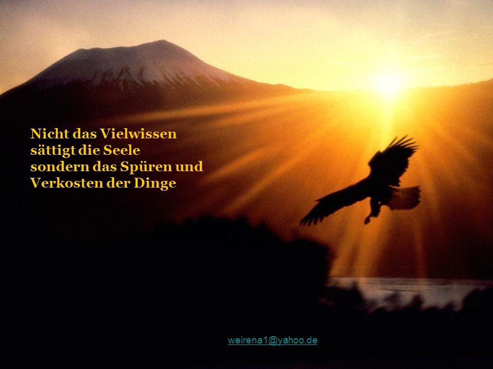Nicht das Vielwissen sättigt die Seele sondern das Spüren und Verkosten der Dinge weirena1@yahoo.de