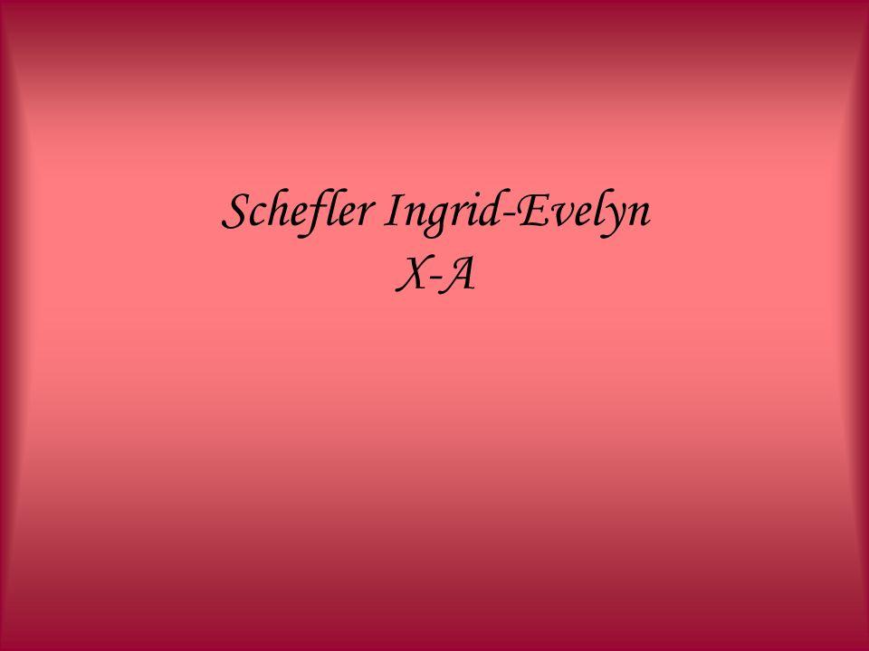 Schefler Ingrid-Evelyn X-A