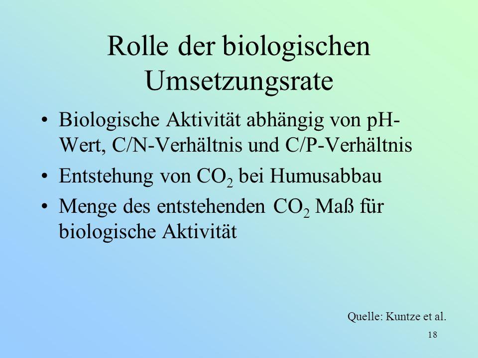 18 Rolle der biologischen Umsetzungsrate Biologische Aktivität abhängig von pH- Wert, C/N-Verhältnis und C/P-Verhältnis Entstehung von CO 2 bei Humusa
