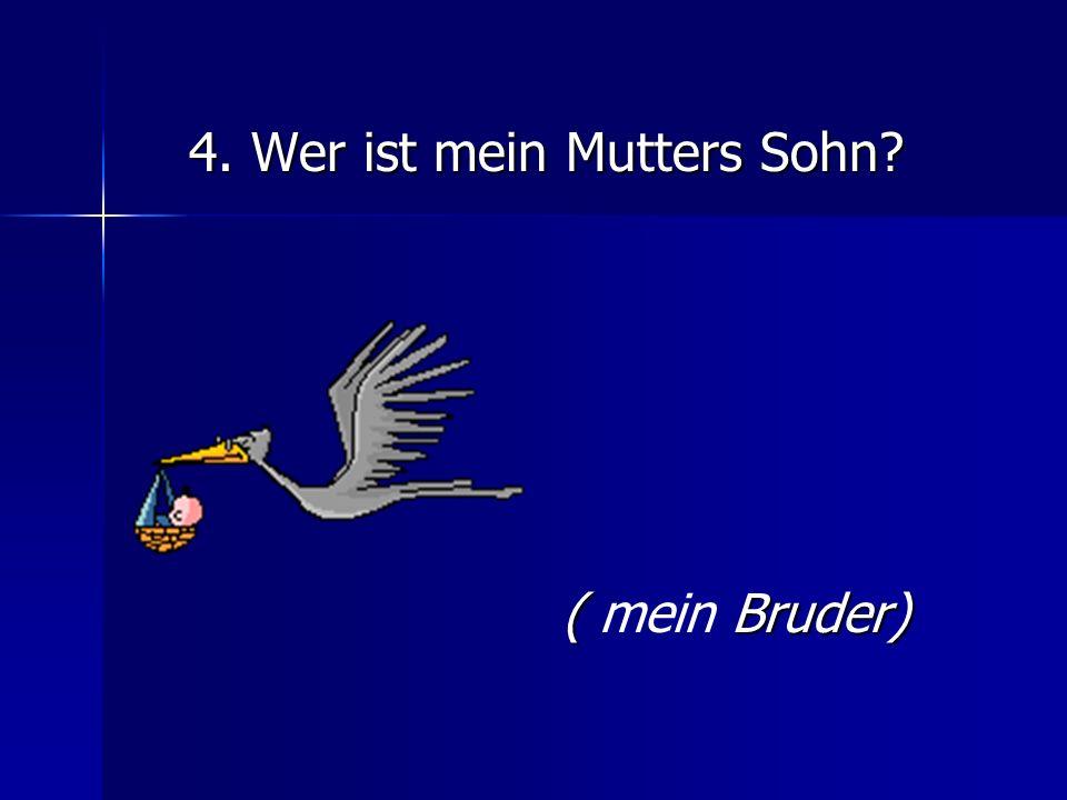 5.Wann feiern die Deutschen Weihnachten.(im Dezember) 6.