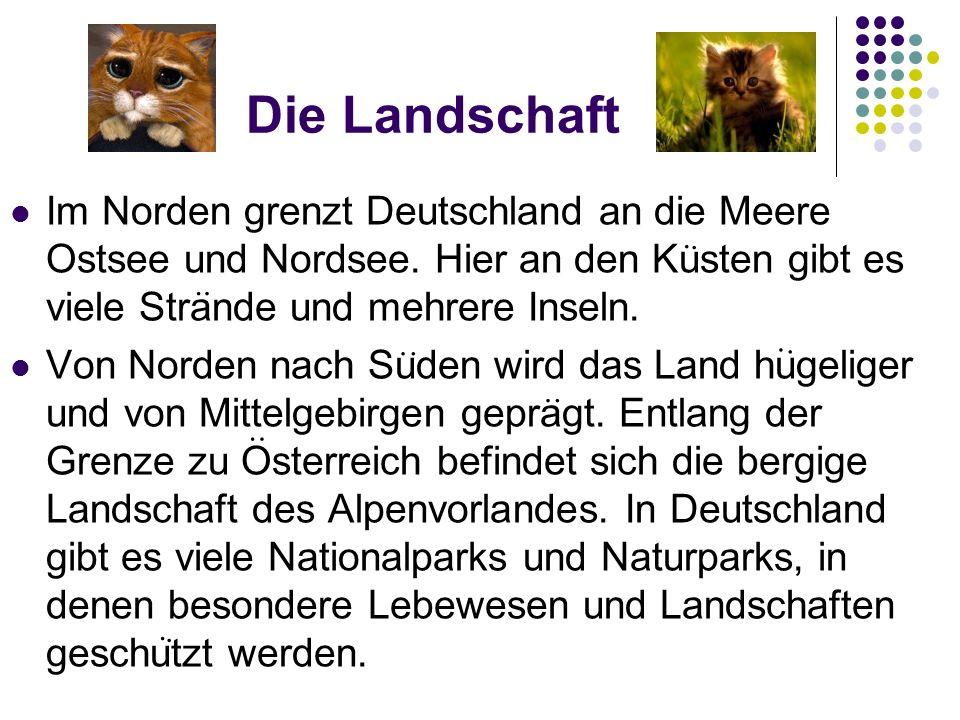 Die Landschaft Im Norden grenzt Deutschland an die Meere Ostsee und Nordsee. Hier an den Kusten gibt es viele Strande und mehrere Inseln. Von Norden n