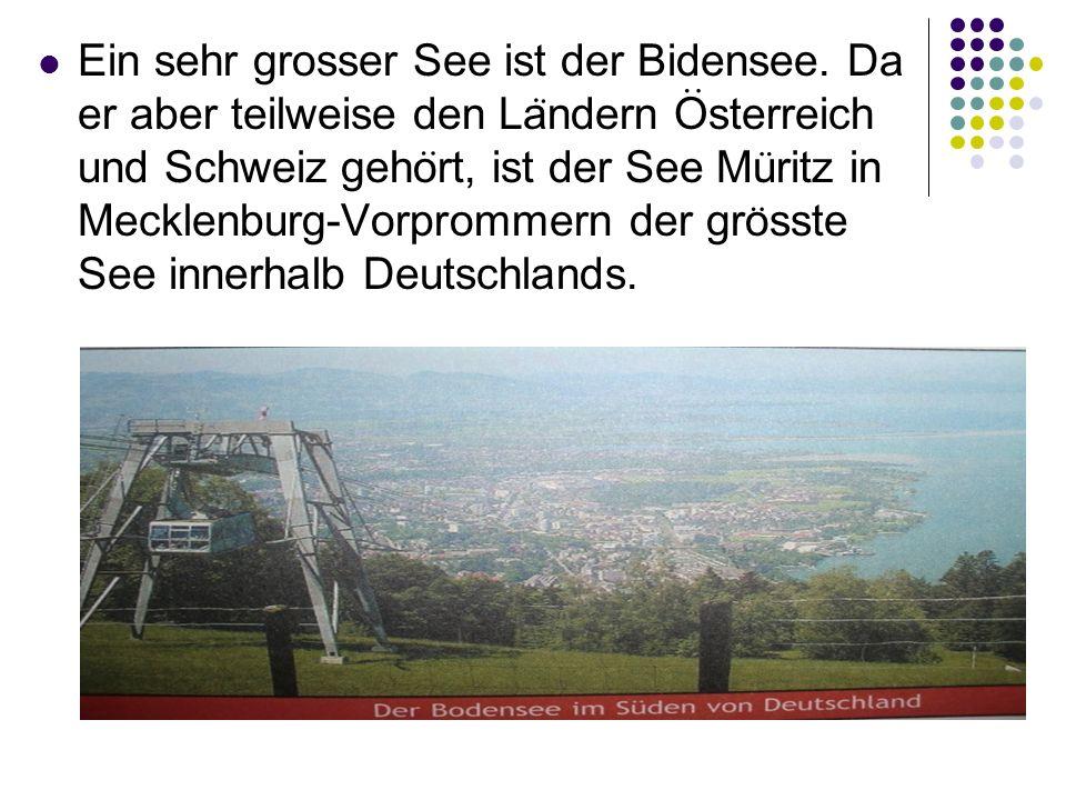Ein sehr grosser See ist der Bidensee. Da er aber teilweise den Landern Osterreich und Schweiz gehort, ist der See Muritz in Mecklenburg-Vorprommern d