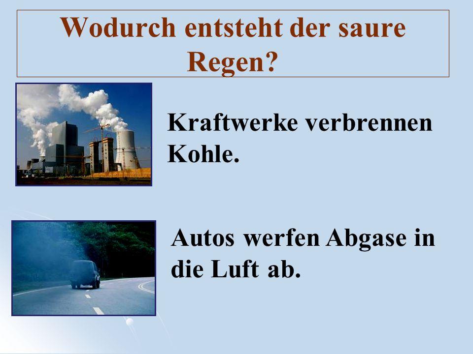 Wodurch entsteht der saure Regen? Kraftwerke verbrennen Kohle. Autos werfen Abgase in die Luft ab.