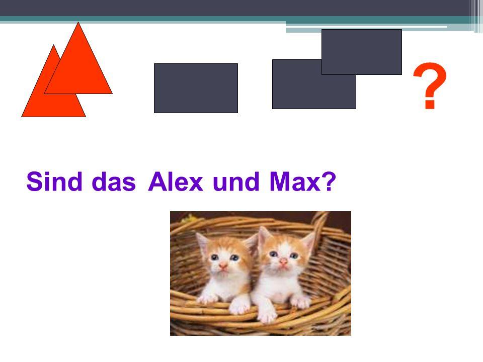 Sind das Alex und Max