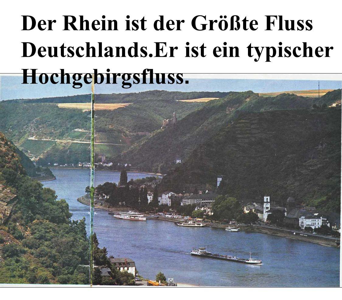 Der Rhein ist der Größte Fluss Deutschlands.Er ist ein typischer Hochgebirgsfluss.