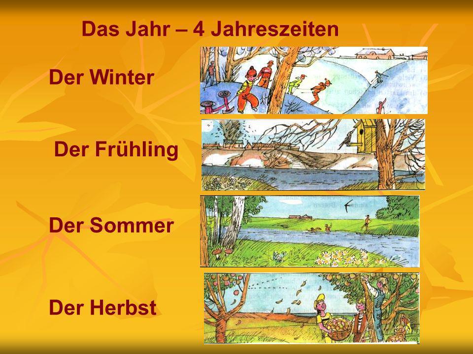 Das Jahr – 4 Jahreszeiten Der Winter Der Herbst Der FrühlingDer Sommer
