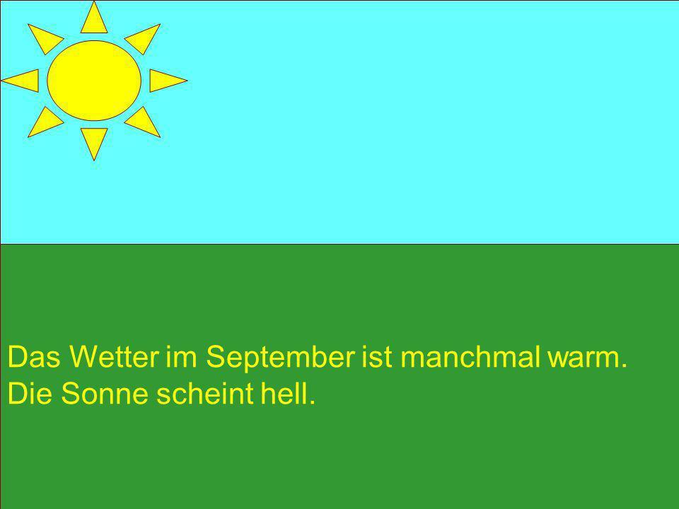 der Herbst + der Monat = der Herbstmonat der Herbst + die Ferien = die Herbstferien der Herbst + das Blatt = das Herbstblatt der Herbst + der Wind = der Herbstwind der Herbst + die Sonne = die Herbstsonne der Herbst + die Ernte = die Herbsternte der Herbst + der Tag = der Herbsttag