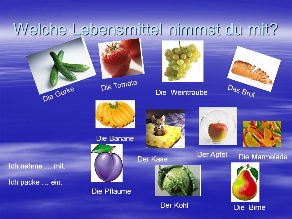 Welche Lebensmittel nimmst du mit? D i e G u r k e D i e T o m a t e Die Weintraube Der Kohl Die Marmelade Der Apfel Der Käse Die Pflaume Die Banane D