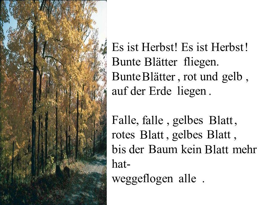 Es ist Herbst! Es ist ! Bunte fliegen. Bunte, rot und, auf der Erde. Falle,, gelbes, rotes, gelbes, bis der kein mehr hat- weggeflogen. Herbst Blätter